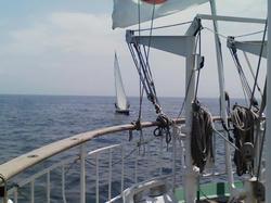 ヨット接近中!