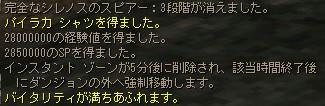 081104_7.jpg
