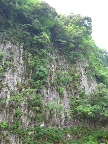 阿蘇の渓谷の絶壁