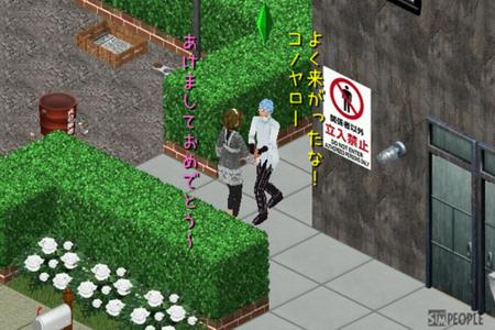 sim96.png