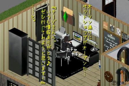 sim162.jpg
