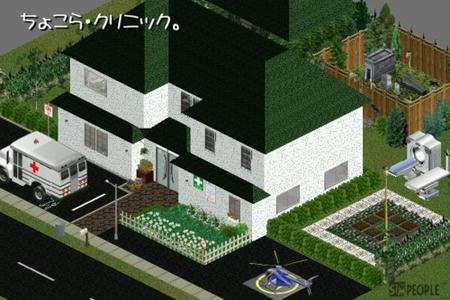 sim213.jpg