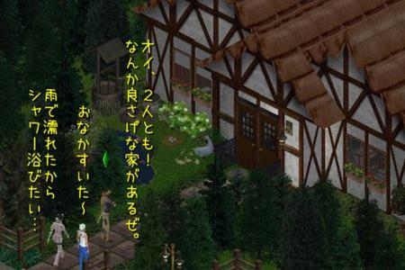 sim240.jpg