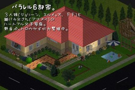 sim299.jpg