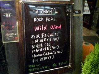 wild-wind.jpg