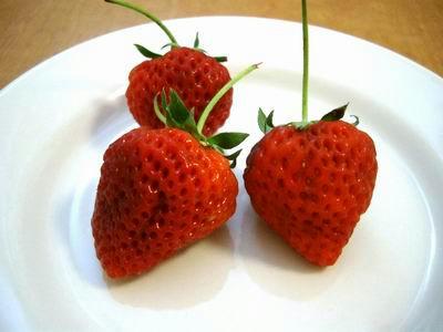 新潟イチゴ