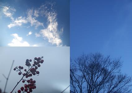 冷たい空と風に流れる雲もある。