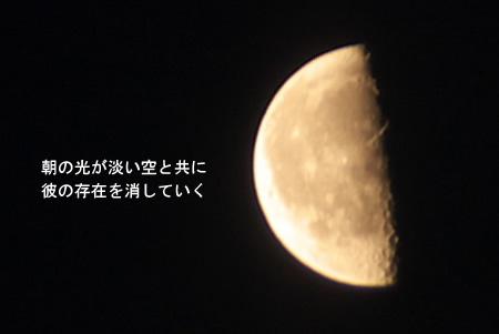 朝の訪れと月の存在。