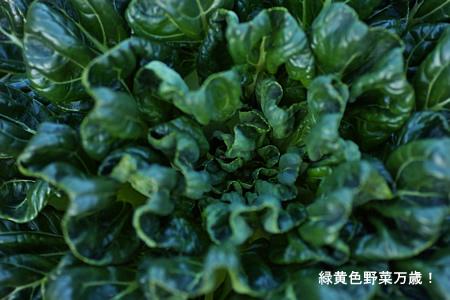 緑黄色野菜万歳!