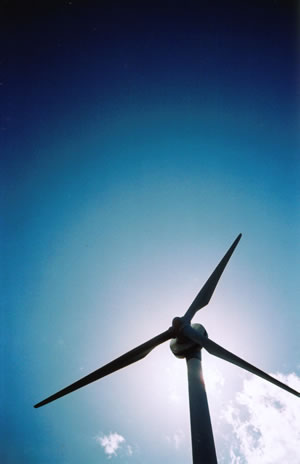 太陽と風の集う場所とシンボル。LOMO LC-A+