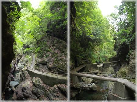 「雨竜の滝」途中の道で・・・