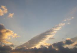 天使の翼01