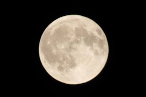 月食見逃してフルムーン