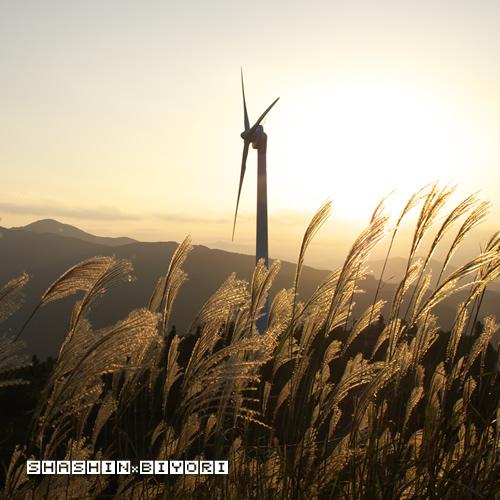 秋の夕暮れと風車