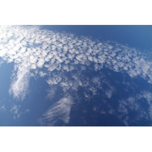 空を泳ぐ雲魚