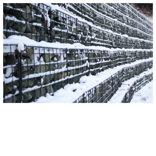 雪降る世界①