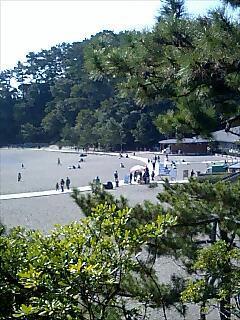 桂浜:アイスクリン