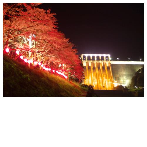 早明浦ダムと夜桜の景色