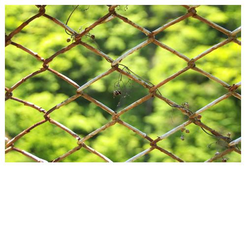 錆びた針金フェンスと新緑