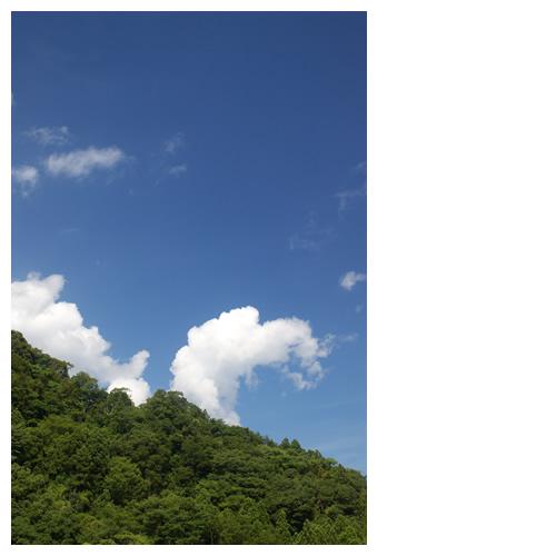 空を優雅に 雲ネッシー
