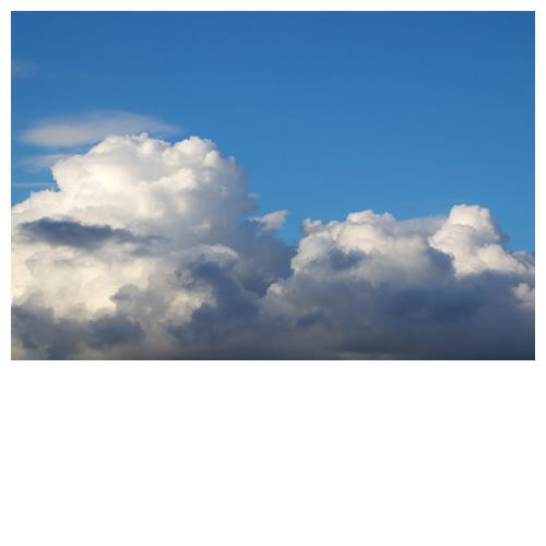 膨れ上がる夏の雲。