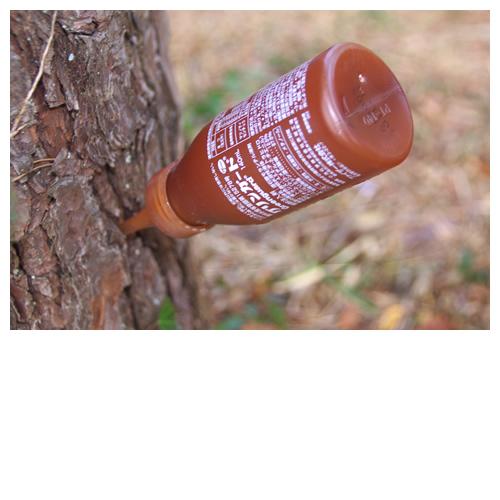 松の木に刺さってたのはグリーンガードという松枯れを防ぐ