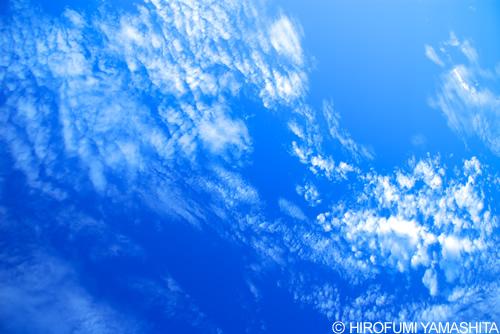 ブルー・スカイ(空と雲)
