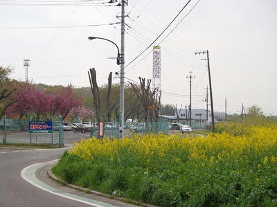 相模原緑化センター