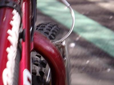 相模原の桜を自転車で散策