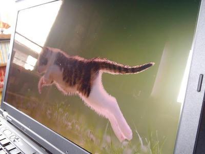 ThinkPad T520+エレコム液晶保護フィルムEF-FL156WHGを横から撮影