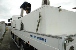 DSC_2166.JPG-600.JPG