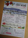 0621_LeafS.jpg