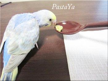 pastaya-blog122.jpg