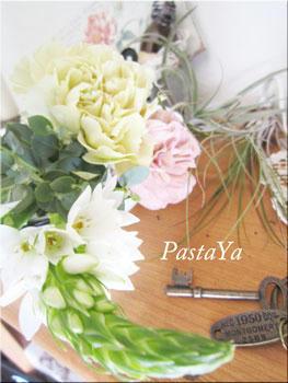 pastaya-blog126.jpg