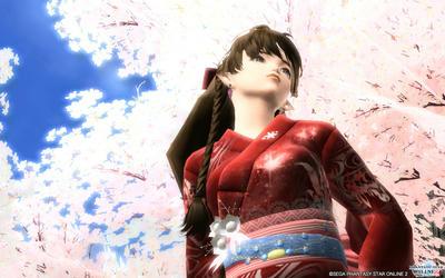桜、綺麗ですよね