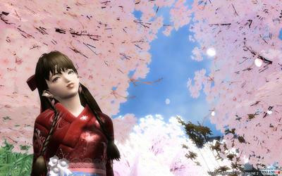 桜はやっぱり絶景だなと