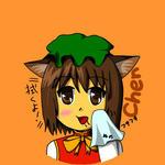 橙クリーナー