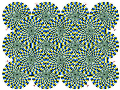 zoptic6.jpg
