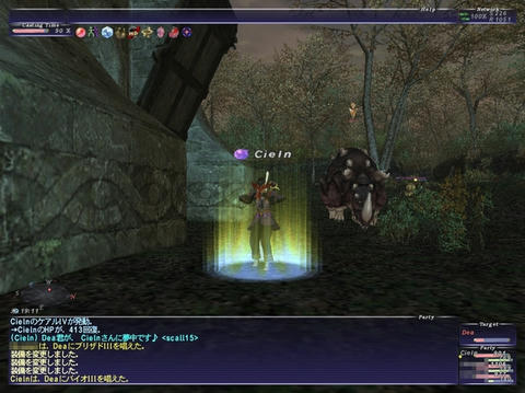 FF11-20090710-3.jpg