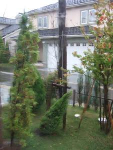 20091008burogu2.JPG