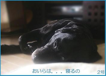 071218_3.jpg
