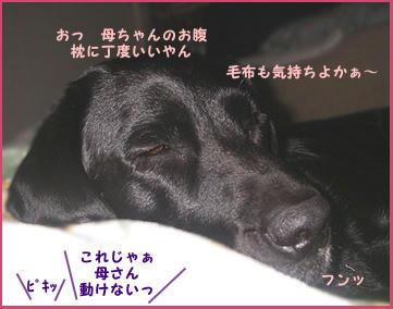 080111_4.jpg