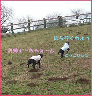 090301_12.jpg