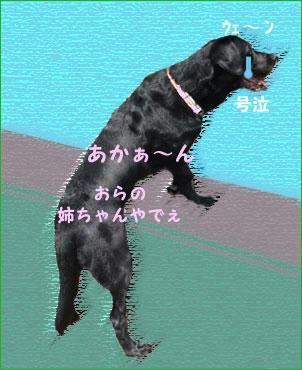 090821_7.jpg