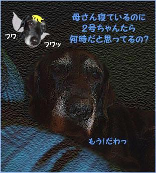 100316_8.jpg