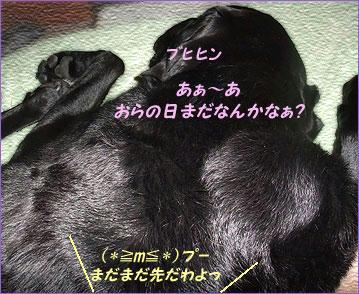 100620_10.jpg