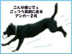 060128_1.jpg