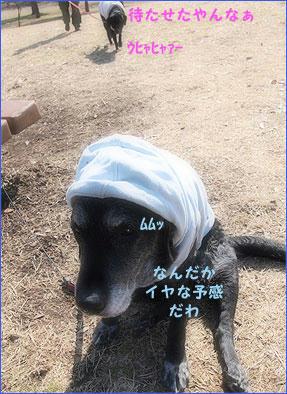 110213_7.jpg
