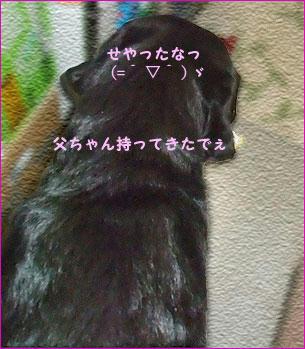 110214_9.jpg
