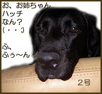 060804_2.jpg